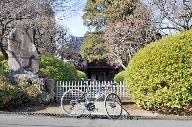 写真: DSC_7074-1 岡上東光院
