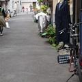 写真: 路地の日常
