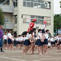 Photos: _DSC2533