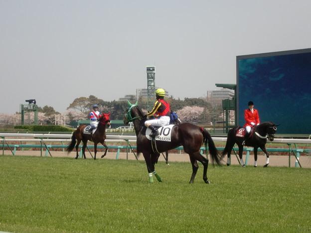 5Rプールルメリットと柴田善臣騎手
