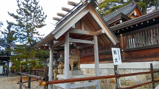 写真: 元伊勢・籠神社(4)