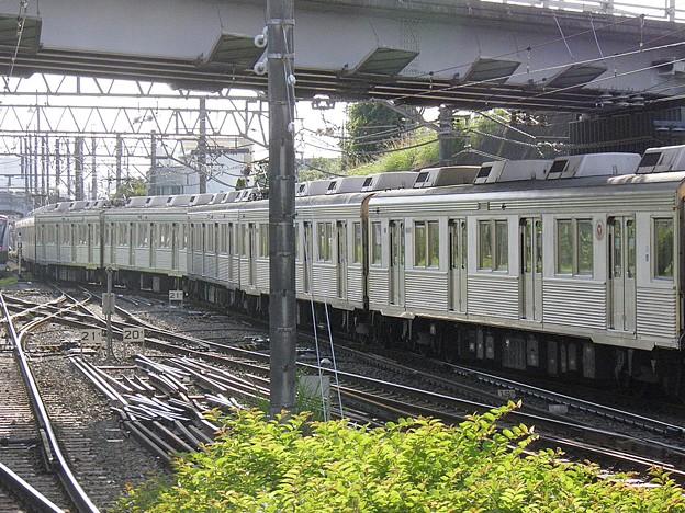 P6030053