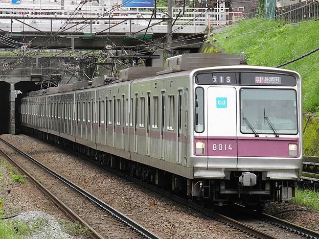 P8170047