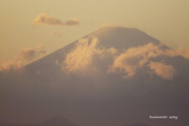Photos: 夕富士