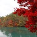 写真: 福島 五色沼 141027 01
