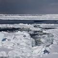 写真: 紋別 流氷クルーズ 130226 04