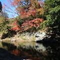 写真: 比企 嵐山渓谷 171121 02