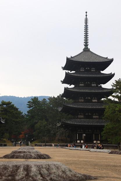 写真: 興福寺 171129 05