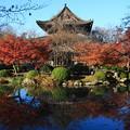写真: 東寺 171202 01