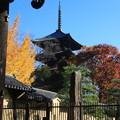 写真: 東寺 171202 06