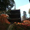 常楽寺 171202 04