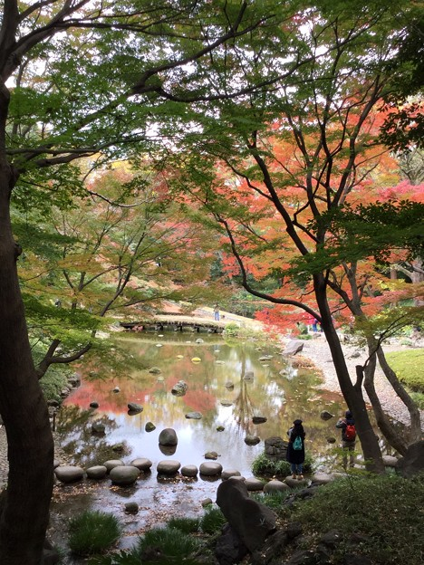 2017 東京 小石川後樂園