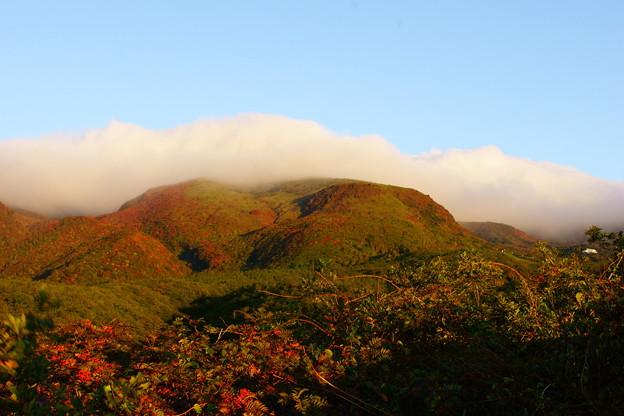 茶臼岳の紅葉
