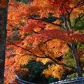 山あいの長松院の紅葉