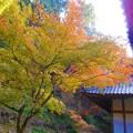 Photos: 備後路 開山堂の秋