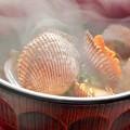 Photos: 備後路の磯の香あふれる ほっこり 幻の赤貝のお味噌汁 ♪
