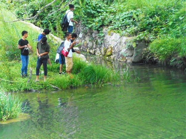写真: お~いトムソーヤー@遊泳禁止・魚釣り禁止@水源池の釣り師たち