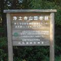 写真: 野鳥のさえずりが聞こえる@森林管理局@浄土寺山稜線にて