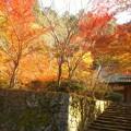 写真: 錦秋の備後路@古刹の佛通寺・永徳院