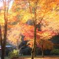 写真: 晩秋の古刹・佛通寺