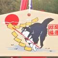 写真: 破魔矢と福犬の絵馬2018(戌年)@八幡神社