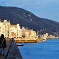 写真: 新春の海岸通り風景@駅前散歩