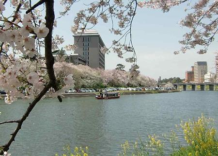 岡崎の桜まつり 2010' 2010年4月1日(木)〜15日(木)220407-8