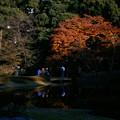 Photos: higashi04