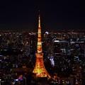 写真: 東京ナイト