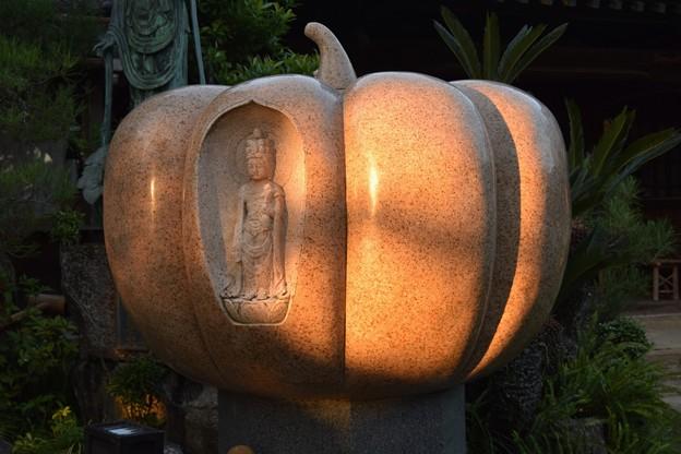 かぼちゃの中に
