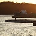写真: 夕日の漁港