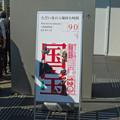 写真: 特別展覧会 国宝 (5)