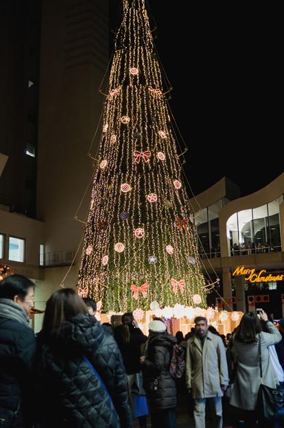 写真: ドイツ・クリスマスマーケット 2017 (1)