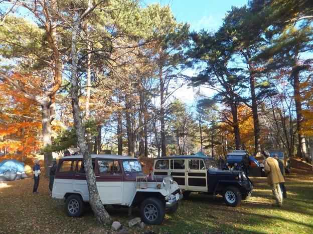 秋のキャンプ 松原湖高原