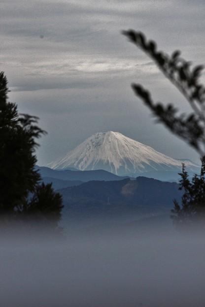 2015年富幕山へ今年☆トミー2回登頂