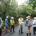 写真: 森林公園 自然・生きものかんさつ隊