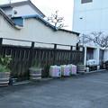 花の舞酒造株式会社10月29日新酒味見会