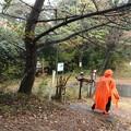 写真: 今日の富幕山