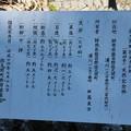 写真: 吉沢の田高杉 (よしざわのただかすぎ)