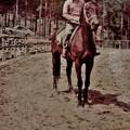 Photos: 奥山公園駐車場東隣りに今も有る奥山 乗馬クラブ