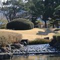 庭園_公園 D4508
