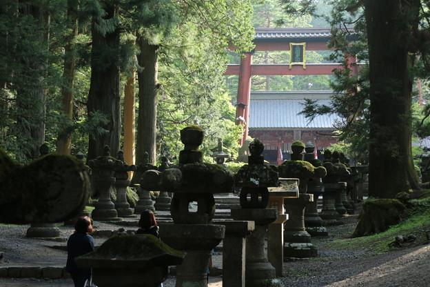 冨士浅間神社 D4991