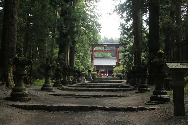 冨士浅間神社 D5026