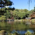 写真: 新宿御苑 D5801