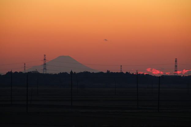 夕富士_守谷 D6131