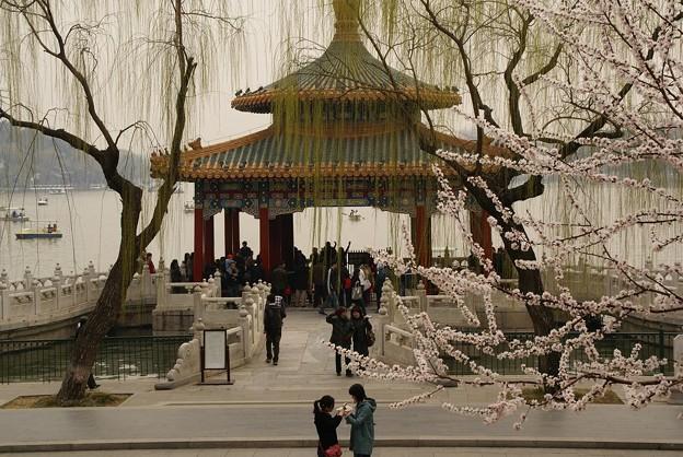 Photos: 五龍亭の前で