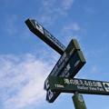 写真: 山手本通りの標識