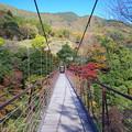 野原吊り橋
