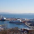 写真: 久里浜港遠景