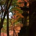 写真: 燃ゆる寺山